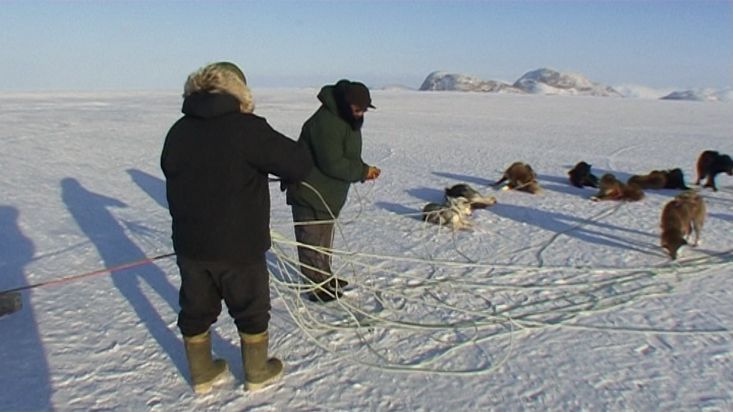 An Inuit untangle the ropes of the dog sled - Nanoq 2007 expedition