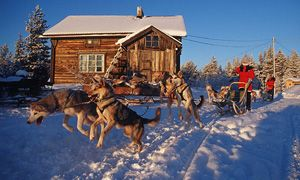 Great dogsled route in Lapland