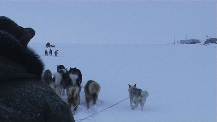 Arrival to Qikiqtarjuaq by dogsled - Nanoq 2007 expedition